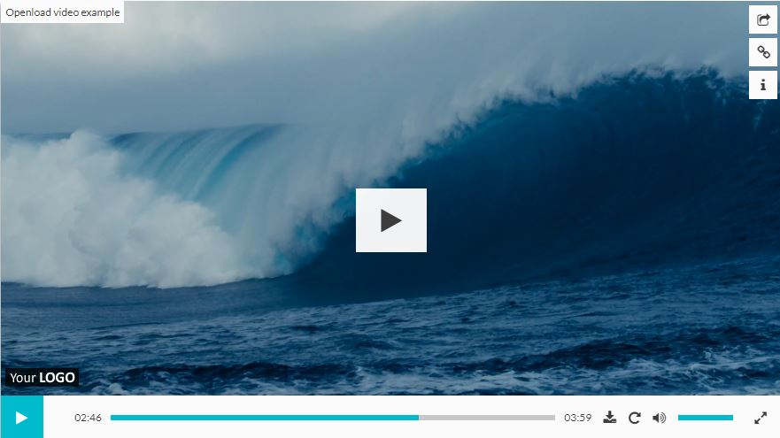 Elite Video Player – Live Preview